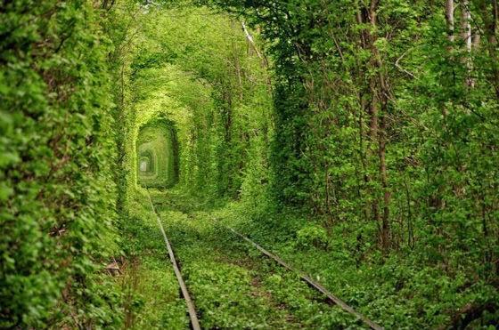 tunel do amor lary di lua (3)